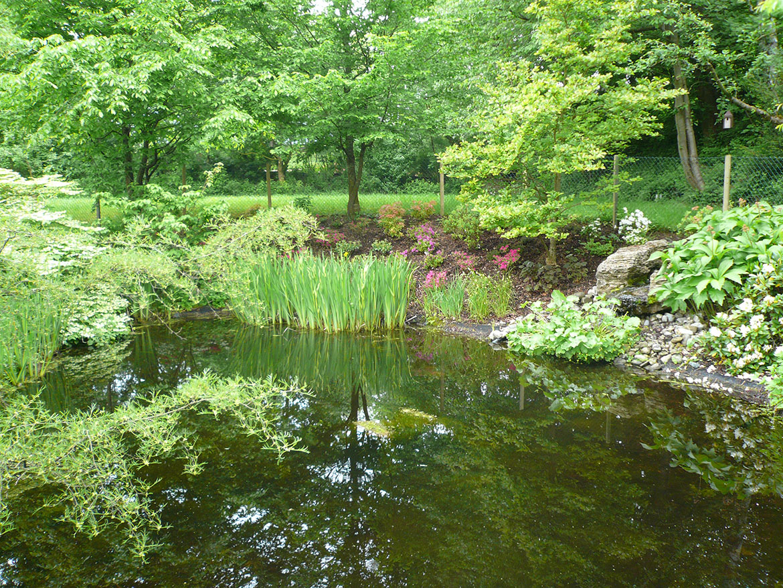 Wasser im Garten-01